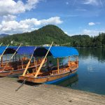 traditional pletna boats on lake Bled