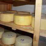 Bohinj cheese