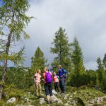 Hikers among the larch trees