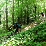 riding trails at robidisce